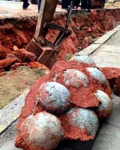 huevos de dinosaurios hallados en Gobi Mongolia