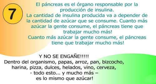 la insulina y el pancreas