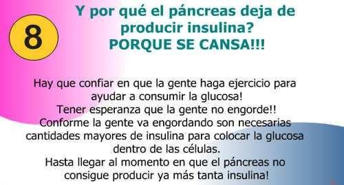 funcion de la insulina en el cuerpo humano