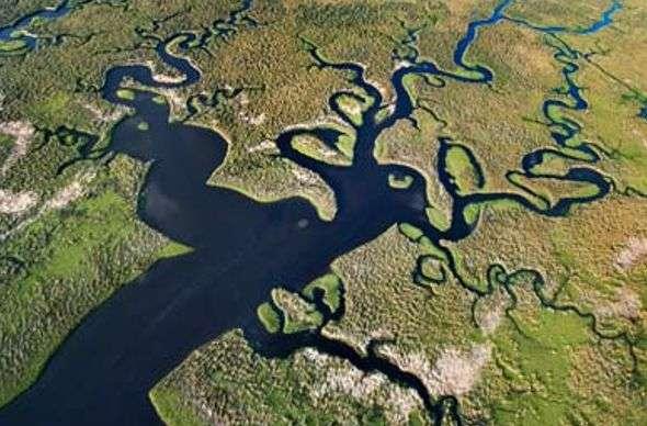 Everglades bellos lugares del mundo