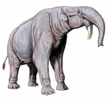 Primeros Mamíferos que Habitaron la Tierra Mamut Tigre Dinoterio