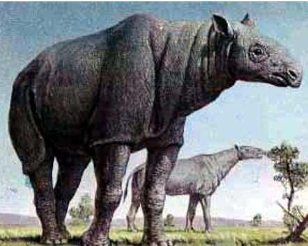 primeros mamiferos del planeta