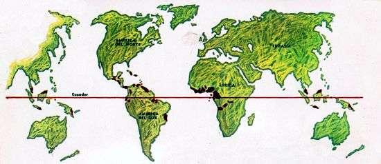 mapa produccion de cacao