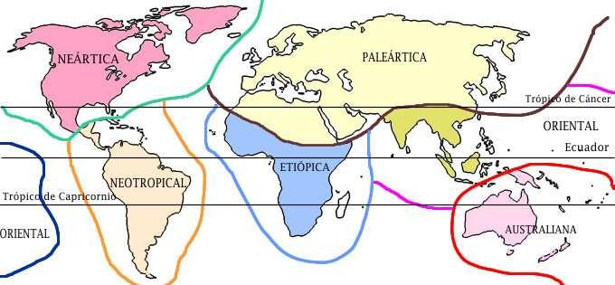 mapa zoogeografico