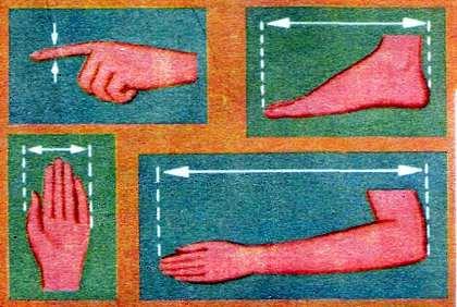 medidas egipcias brazo, palma, pulgar