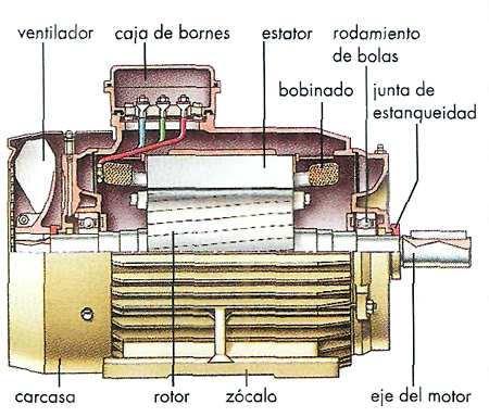 motor asincronico corte