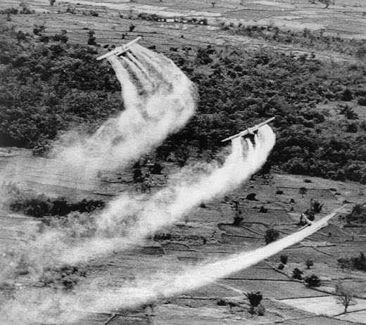 Uso del Napalm y Gases Defoliantes en la Guerra de Vietnam ...