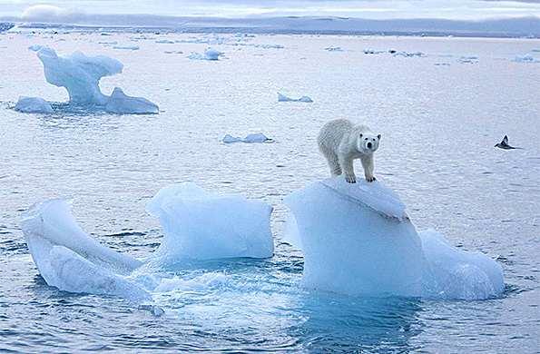 El Océano Glacial Artico:Riquezas,Extension, Ubicacion y Superficie