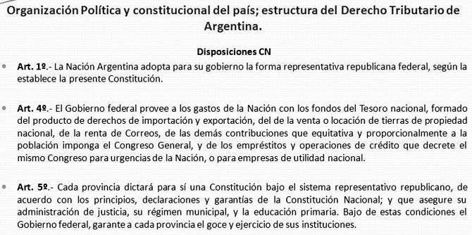 organizacion de la constitucion argentina