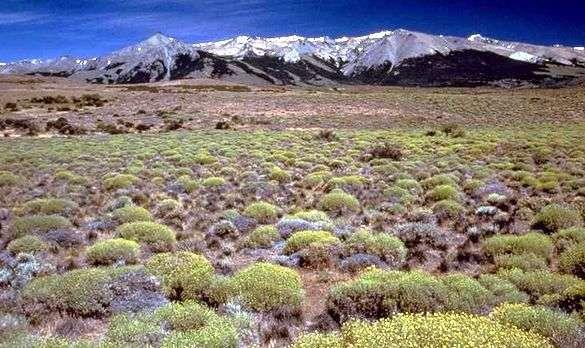 Relieve de la Patagonia