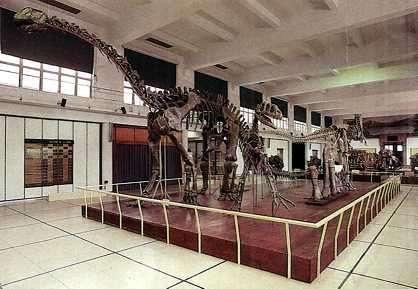 dinosaurio patagonia