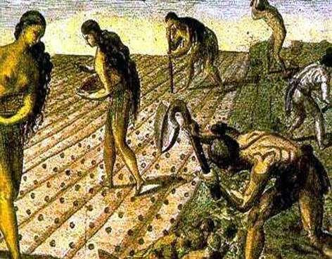 Politica Agraria en el Virreinato:Agricultura y Mineria - BIOGRAFÍAS e  HISTORIA UNIVERSAL,ARGENTINA y de la CIENCIA