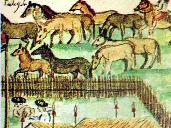 ganaderia en el virreinato del rio de la plata