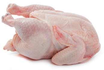 alimento pollo