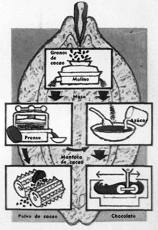 Esquema de la fabricación del chocolate