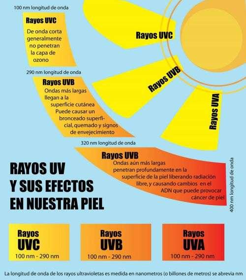 penetracion de los rayos ultravioletas
