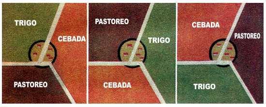 esquema de rotacion de cultivos