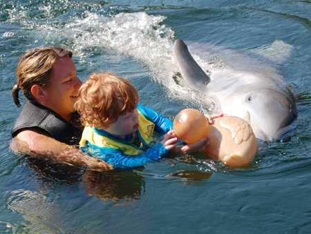 contacto con delfines con fines curativos
