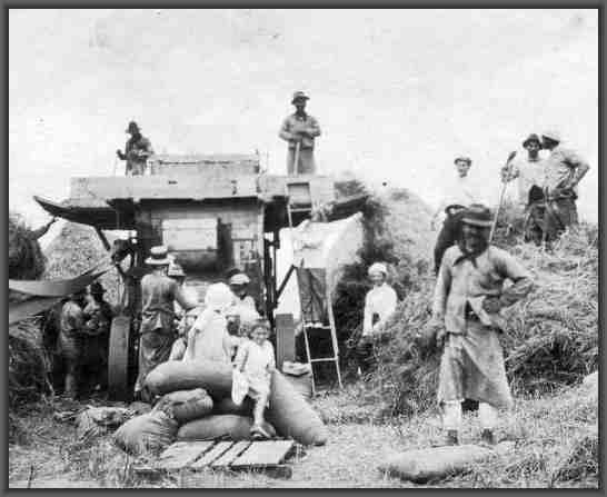 la agricultura en argentina en el siglo xix