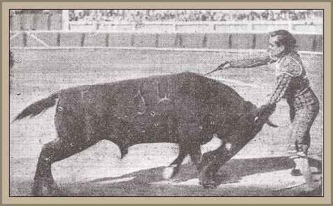 Muerte de un toro en la plaza