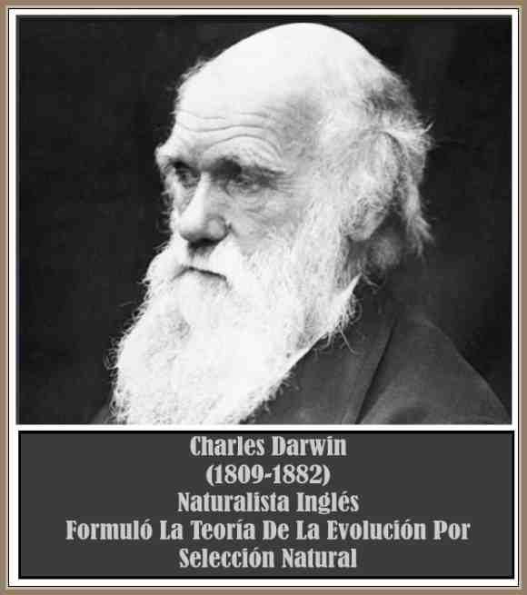 Biografia de Darwin Charles y La Teoria de Evolucion Por Seleccion Natural  – BIOGRAFÍAS e HISTORIA UNIVERSAL,ARGENTINA y de la CIENCIA