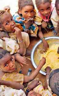 hambre en africa desafios nuevo milenio