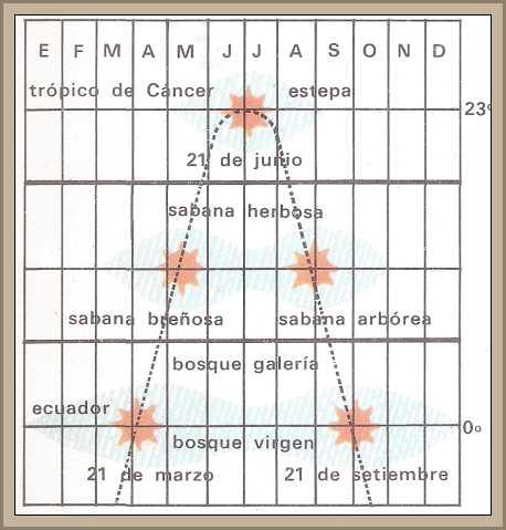http://historiaybiografias.com/archivos_varios5/diagrama_sabana.jpg