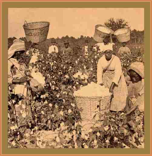 la historia de la esclavitud estados unidos