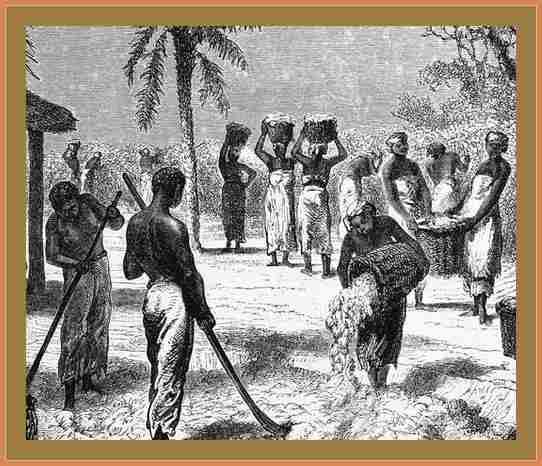 esclavitud en estados unidos historia