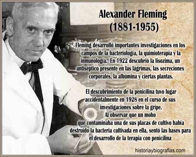 Biografía de Fleming Alexander y Descubrimiento de la Penicilina ...