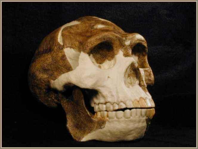 importantes descubrimientos arqueologicos