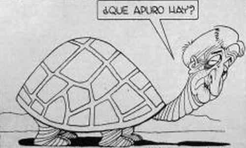 caricatura de illia la tortuga