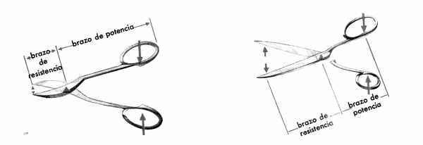 ejemplos de palancas simples - tijera