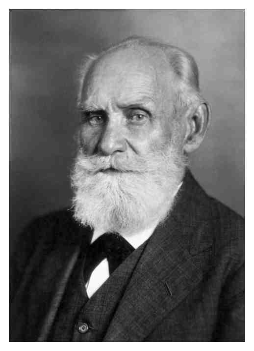 Los Reflejos Condicionados Experimentos de Pavlov Con Campanas y Perros