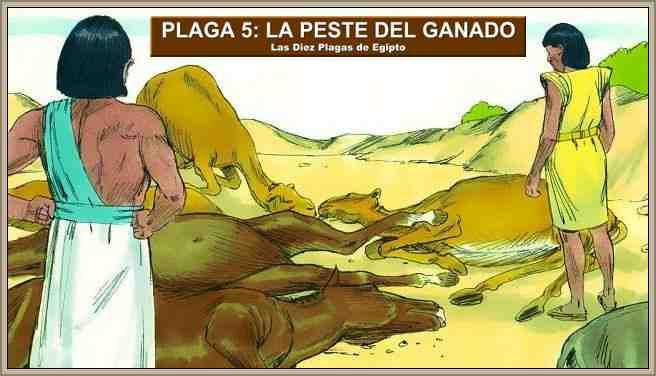plaga del ganado en egipto