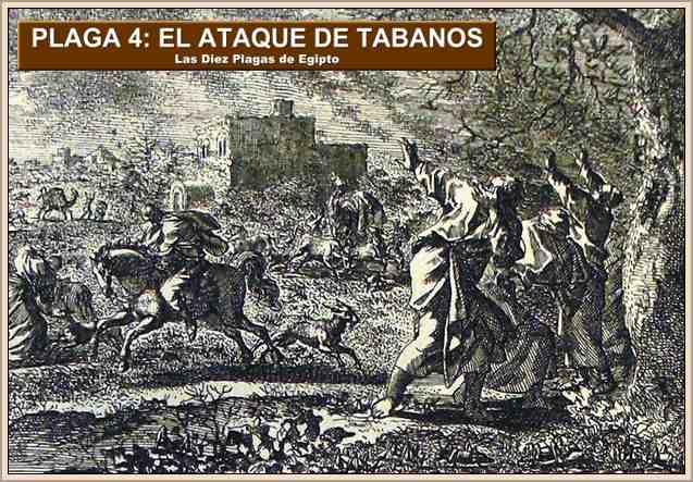 plagas de egipto los tabanos
