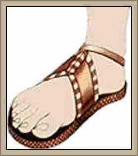 Historia del Calzado y Su Evolución Tipos y Partes del Zapato