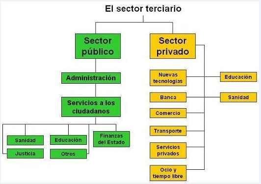 cuadro resumen sector terciario