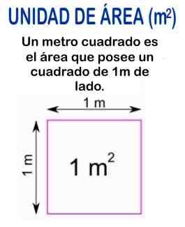 1 metro cuadrado concepto